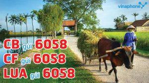 đăng ký dịch vụ nông thôn xanh vinaphone